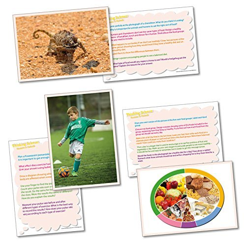 Wildgoose Education SC1142 Thinking About Humans and Animals Activity Card (Pack of 20) from Wildgoose Education