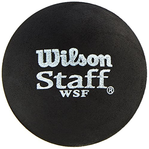 Wilson Unisex 2 Ball Dot Staff Squash, Black/Red, One Size from Wilson