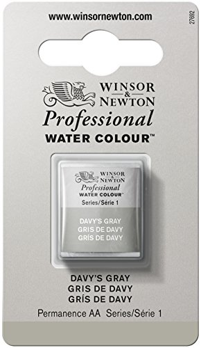 Winsor & Newton Half Pan Professional Water Colour, Davy's Gray from Winsor & Newton