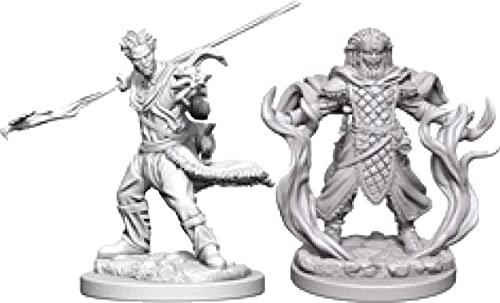 Human Male Druid from WizKids
