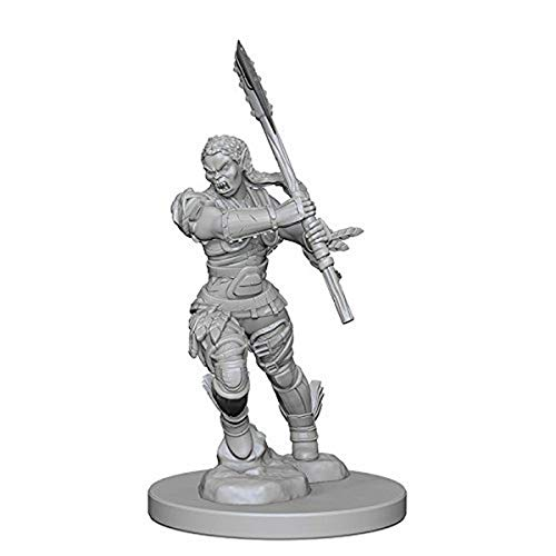 Pathfinder: Deep Cuts Unpainted Miniatures: Half-Orc Female Barbarian from WizKids