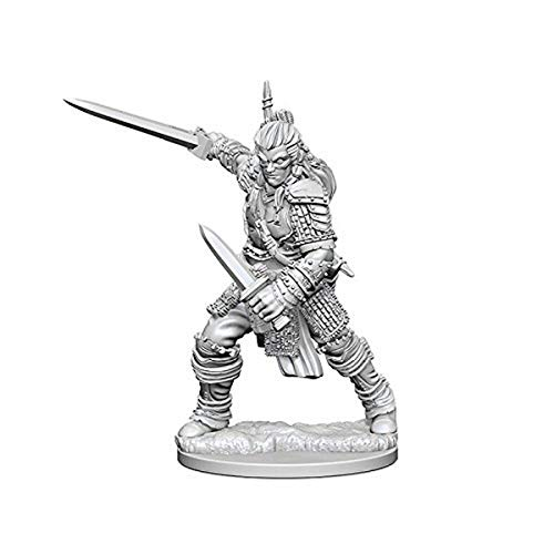 Pathfinder: Deep Cuts Unpainted Miniatures: Human Male Fighter from WizKids