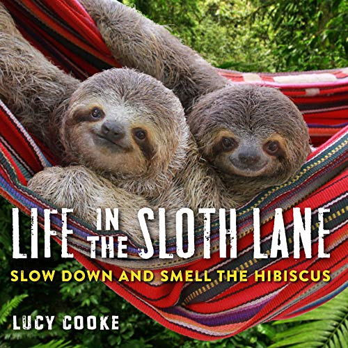 Life in the Sloth Lane from Workman Publishing