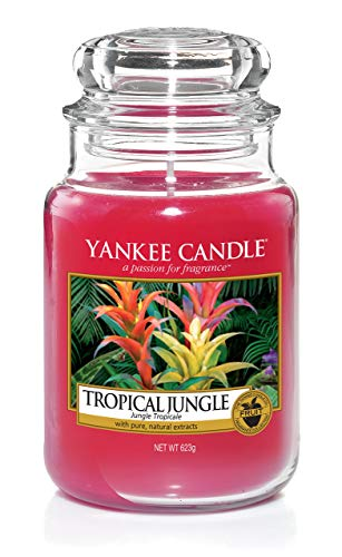 Yankee Candle Large Jar Scented Candle, Tropical Jungle, Up to 150 Hours Burn Time from Yankee Candle