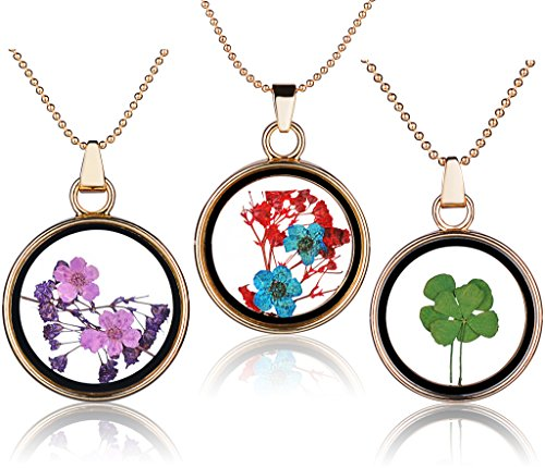 Yumilok 3pcs Real Dry Forget me not/Four Leaf Clover Specimen Transparent Glass Alloy Round Bottle Pendant Necklace for Women/Girls from Yumilok