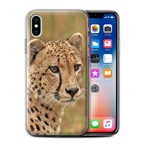 Stuff4 Phone Case for Apple iPhone XS Wild Big Cats Cheetah Design Transparent Clear Ultra Soft Flexi Silicone Gel/TPU Bumper Cover from Stuff4
