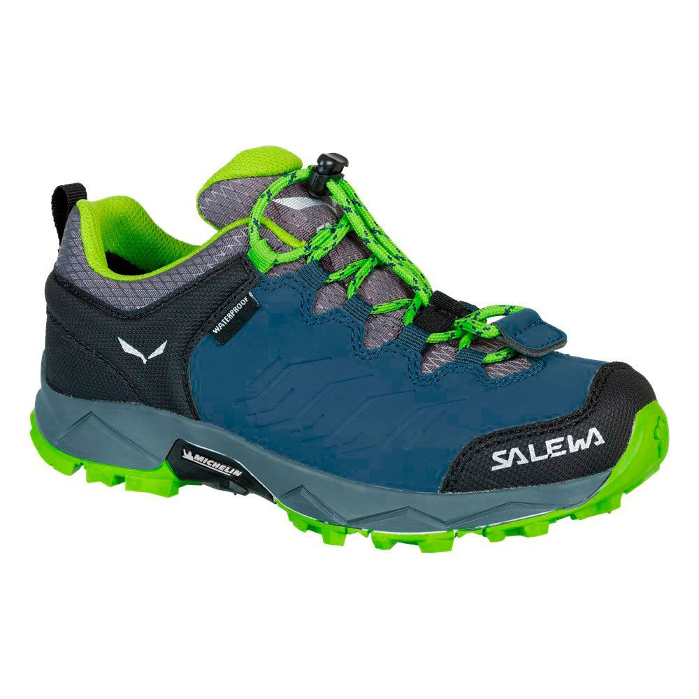 Shoes Mtn Trainer Waterproof from Salewa